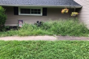 Residential Landscaping: Before